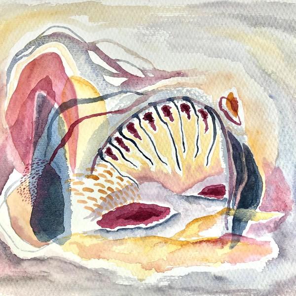"""""""Cueva de Medusa"""" (2019)"""
